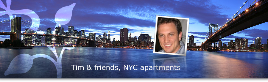 Rent An Apartment In New York Tim Amp Friends Nyc Apartments